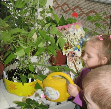 Дети поливают фасоль