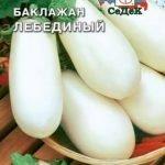 Сорт баклажана Лебединый