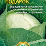 Семена капусты фирмы «Плазмас»