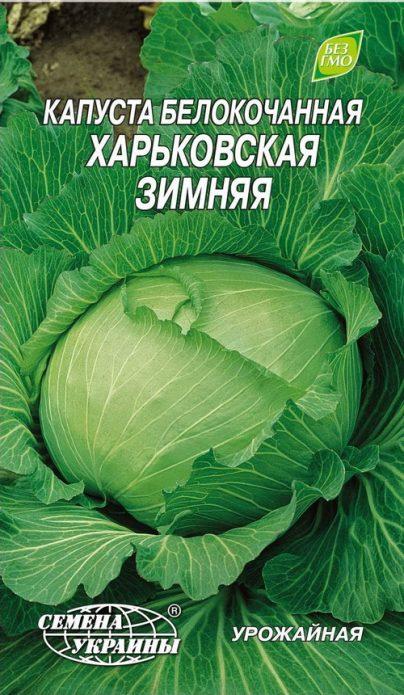 Капуста Харьковская зимняя