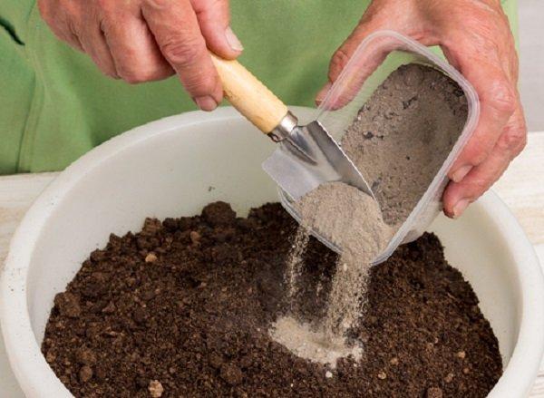 Субстрат для посева семян капусты