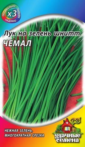 Сорт шнитт-лука Чемал