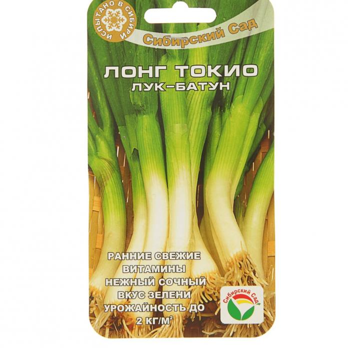 Семена лука-батуна Лонг Токио