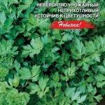 Сорт листового сельдерея Самурай