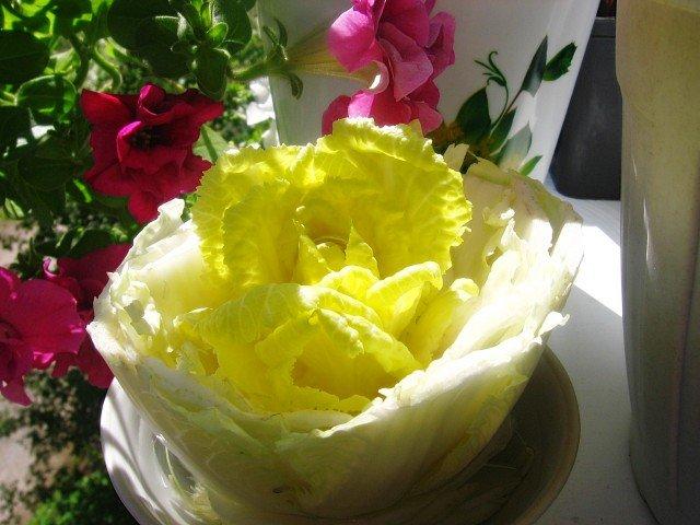 Изображение - Бизнес на выращивании пекинской капусты post_5bd007805f7f6