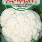 Гибрид цветной капусты Малимба