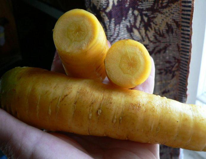 Морковь Золотистый плов