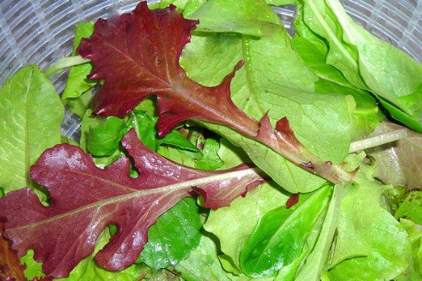Салат Дубовый лист
