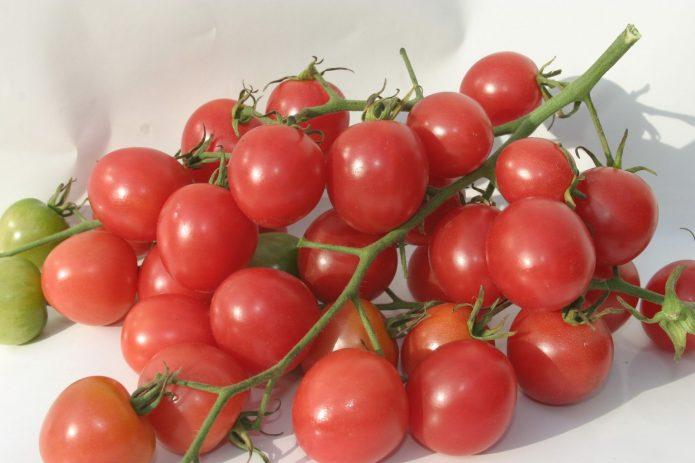 Кисть томатов Монисто розовое