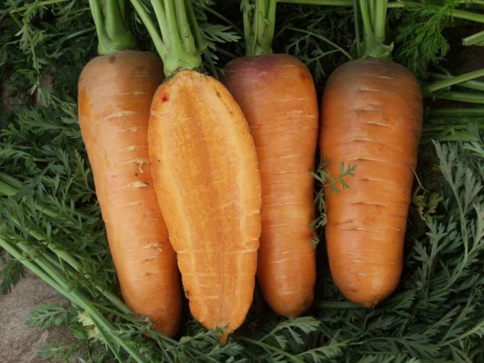 Морковь Смаковница