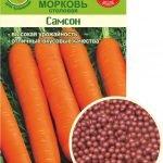 Гранулированные семена моркови