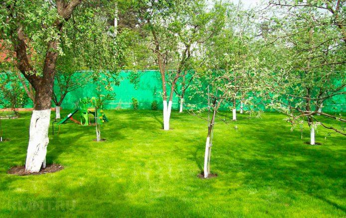 Планирование сада