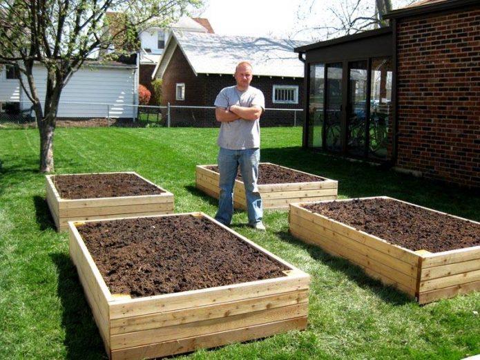 Ящики для посадки томатов
