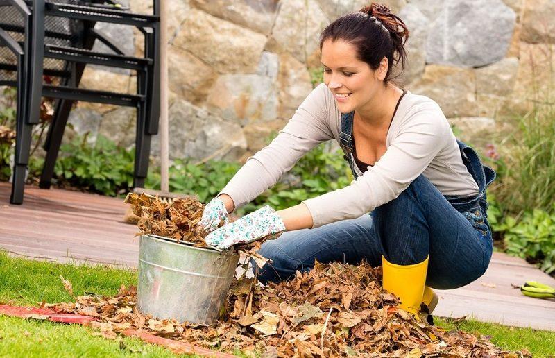 Девушка убирает листья с газона