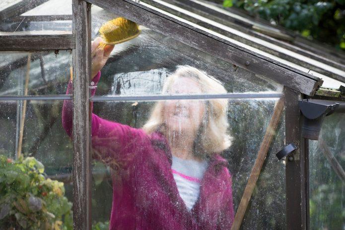 Женщина моет стёкла в теплице