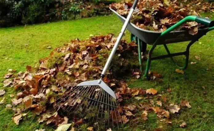 Уборка мусора в саду