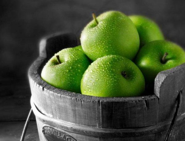 Лучшие сорта зелёных яблок: как не ошибиться с выбором