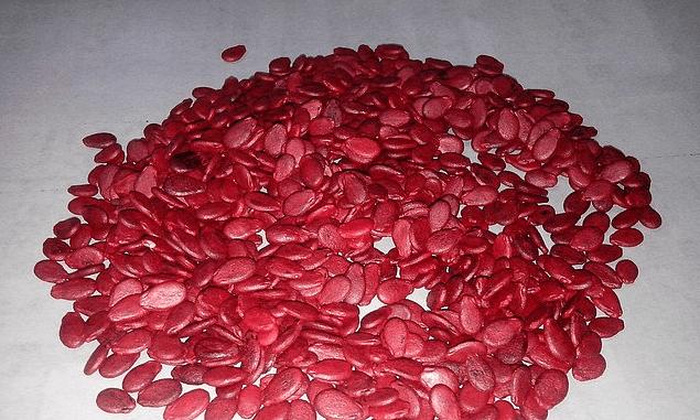 Семена арбузов, обработанные производителем