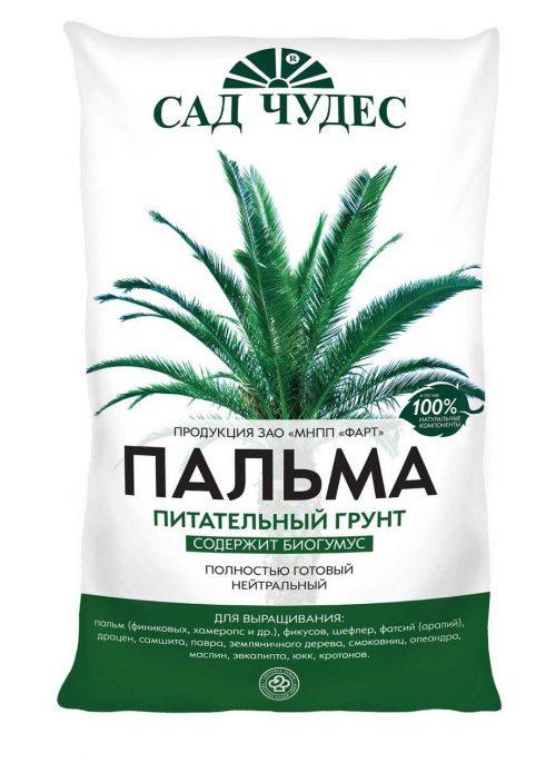 Готовая смесь для посадки финиковой пальмы