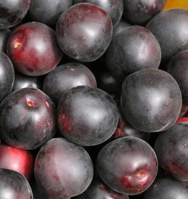Плоды абрикоса сорта Чёрный принц