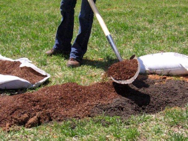 Плодородный грунт для посадочной ямы