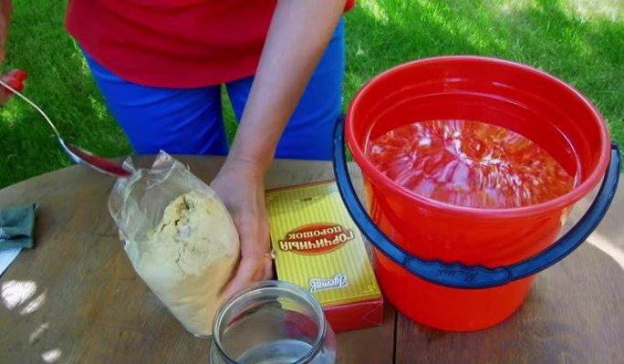 Приготовление горчичного настоя