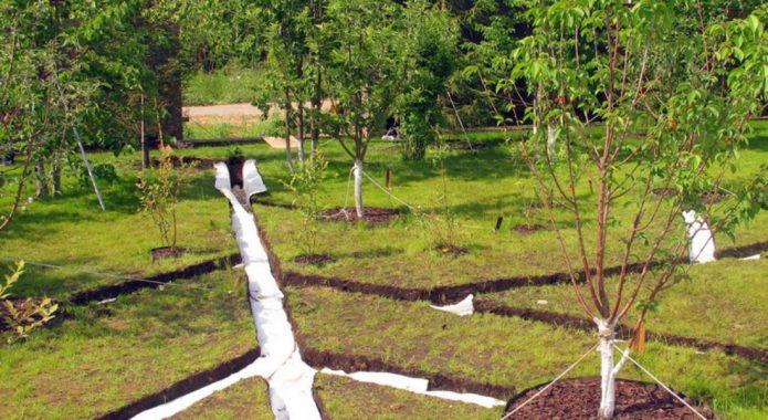 Дренажные отводы в саду