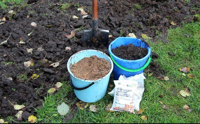 Предпосадочная заправка почвы