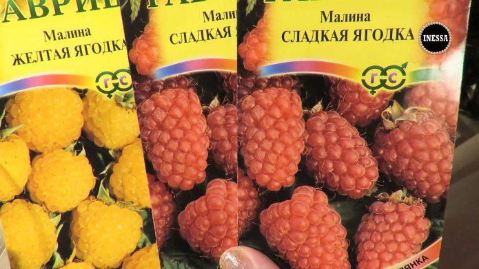Покупные семена малины