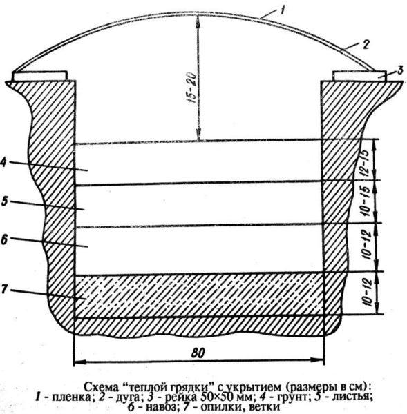 Схема тёплой грядки
