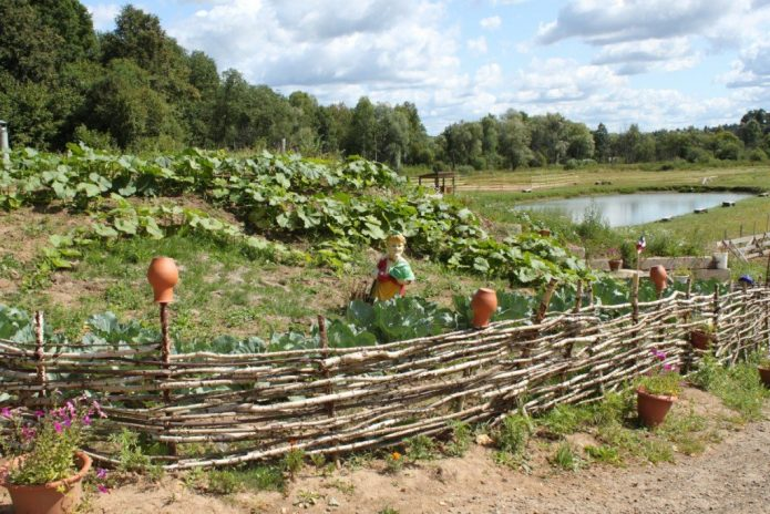 Украинский огород