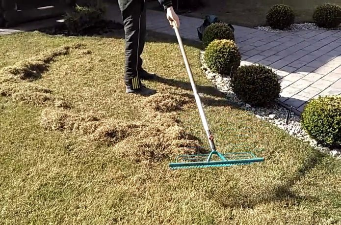 Вычёсывание травы