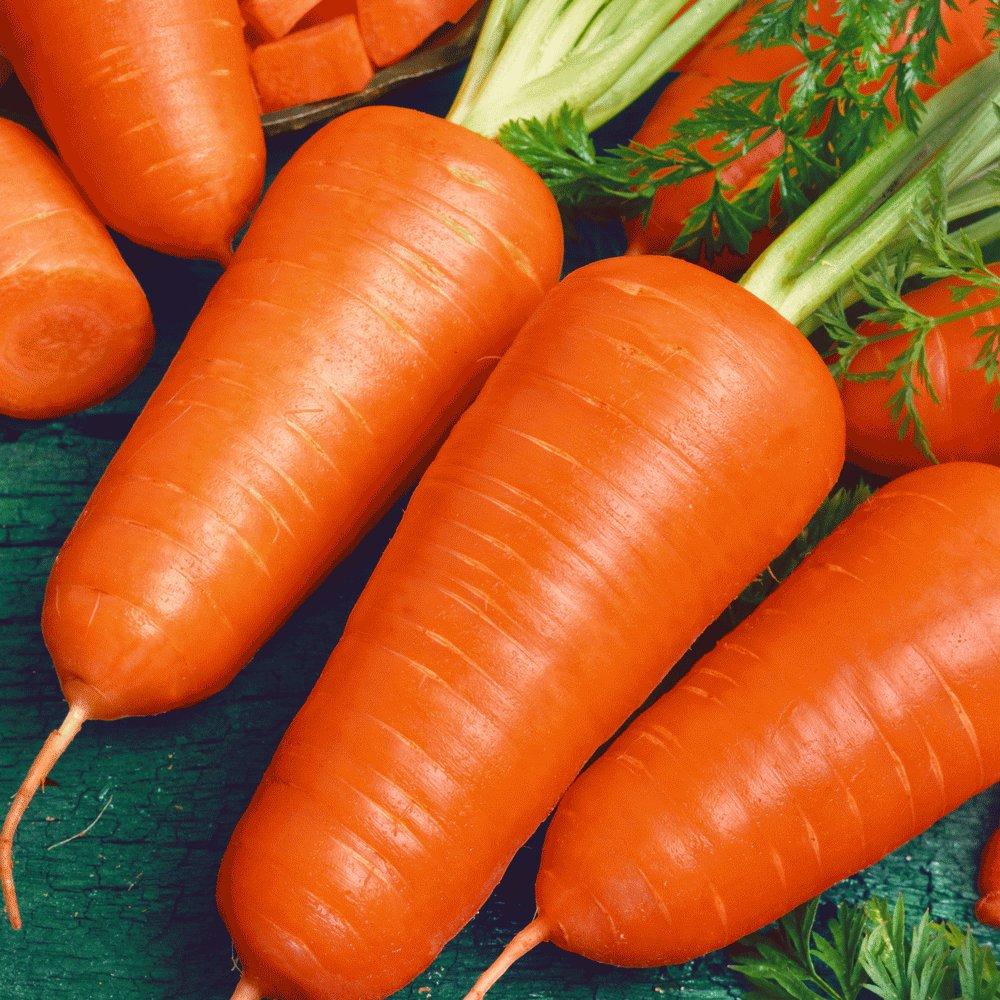 обжаривается корнеплода моркови картинки тех