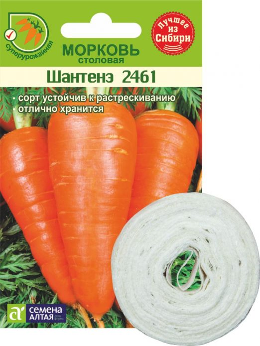 морковь шантане на ленте