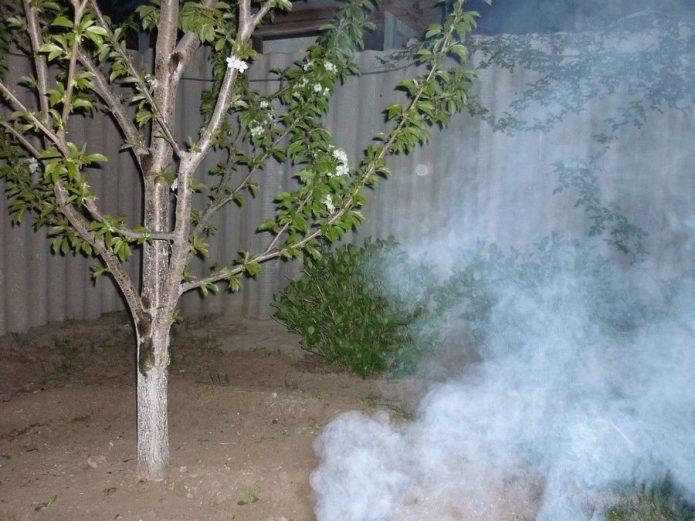 Защита сада дымлением