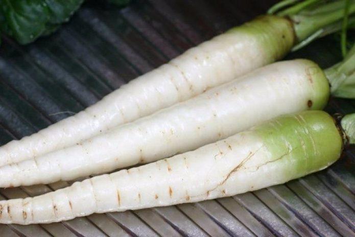 Морковь Белая Бельгийская