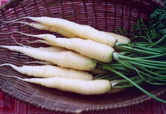 Морковь Лунная Белая