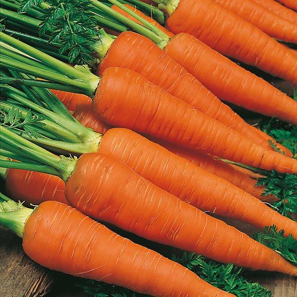 Морковь Нирвана F1
