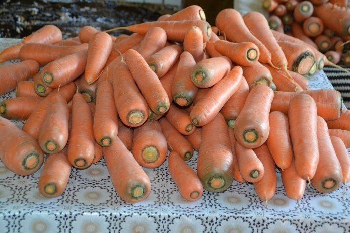Морковь Лосиноостровская-13