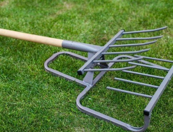 Бережём спину и суставы: современные ручные инструменты для сада и огорода