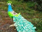 Яркий павлин выполнен из пластиковых бутылок