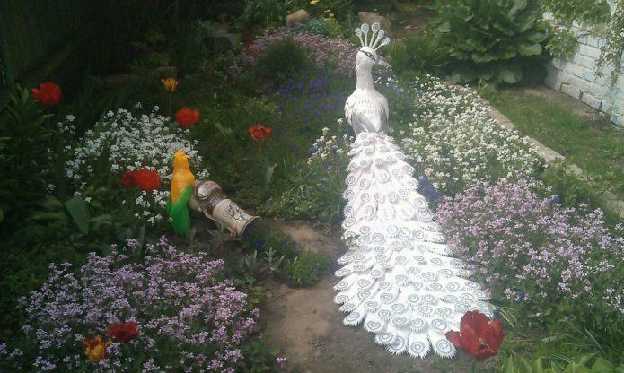 Белый павлин в саду