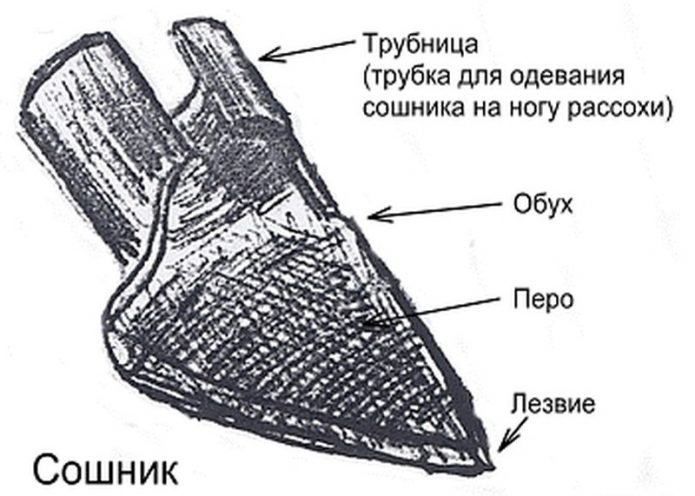 Сошник