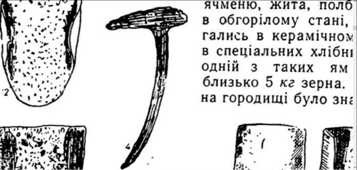 Зуб бороны из Старой Ладоги
