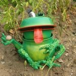 Лягушка из чайника