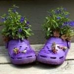 Мини-цветник в шлёпках