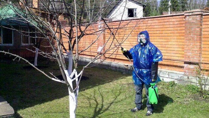Обработка сада медным купоросом
