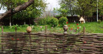 Плетень в саду