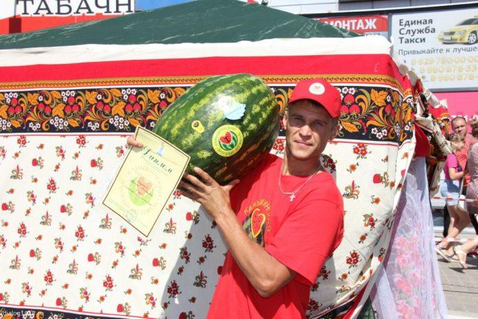 Конкурс арбузов в Камышине