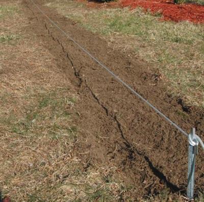 Разметка участка для живой изгороди